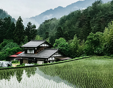 Providing circular economy solutions in Saga, Japan